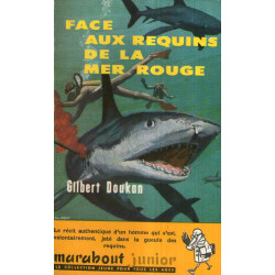1-marabout-junior-103-face-aux-requins-de-la-mer-rouge